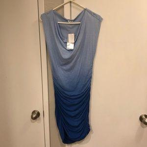 Splendid Bodycon Dress